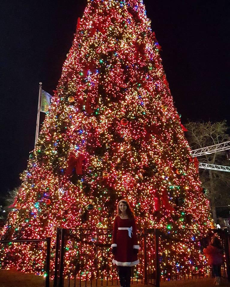 Christmas photo1